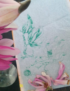 dessin au stylo bille vert